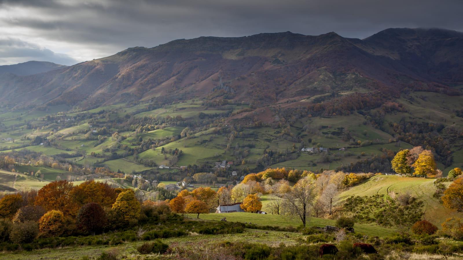 vallee jordanne automne