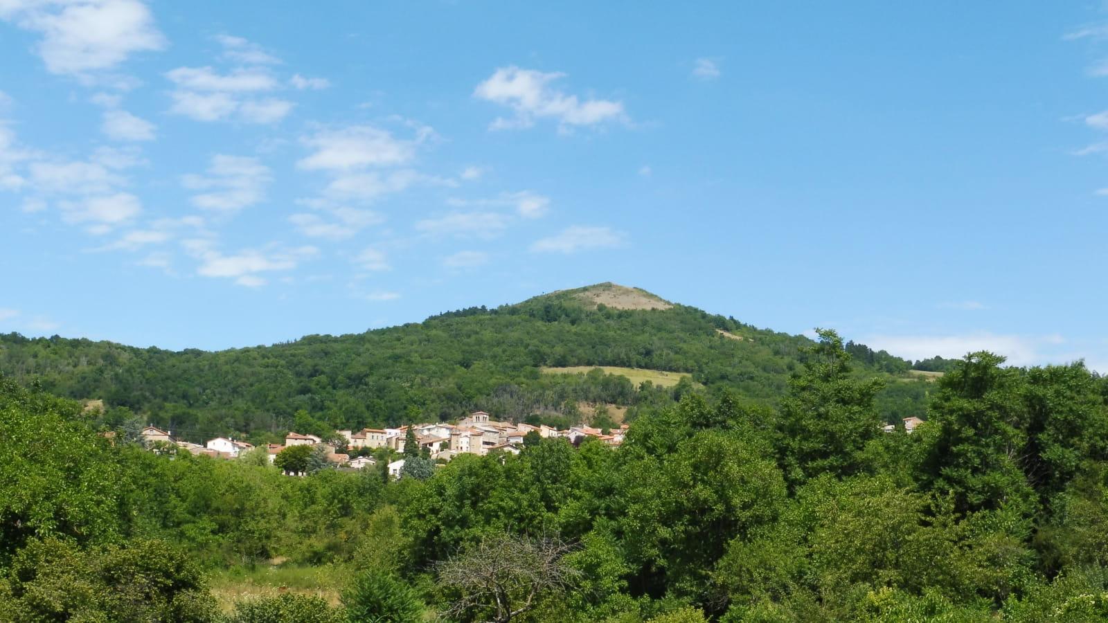 Forêt du Puy Saint-Romain