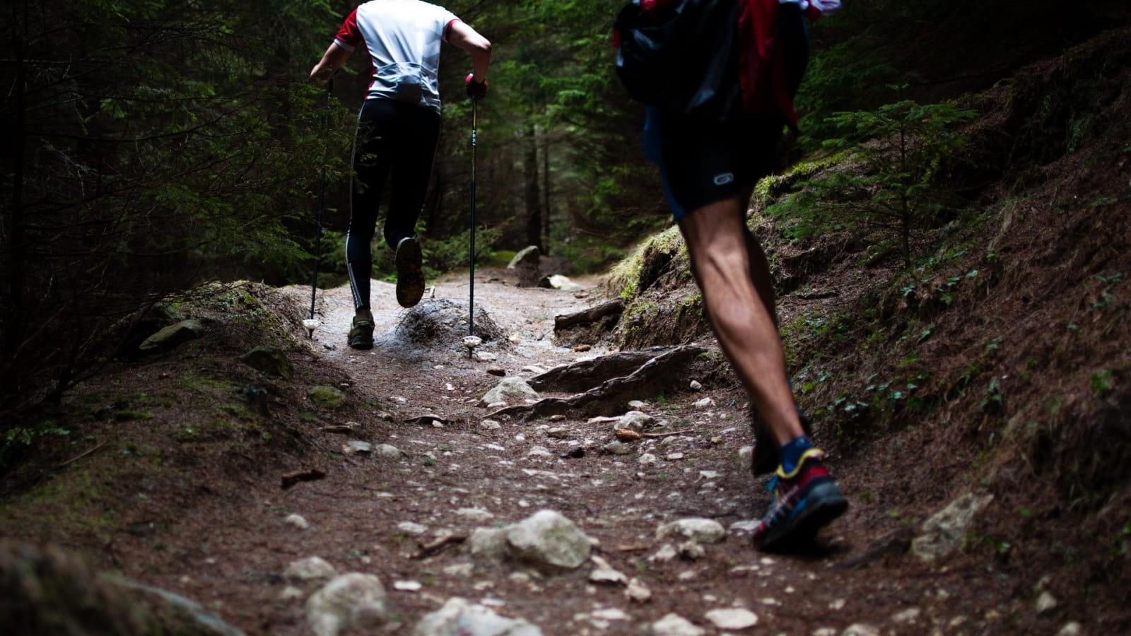 Les sources de la Maronne - Trail - 7,6 km