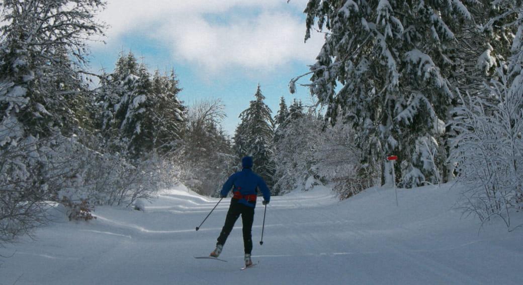 Ski de fond - Secteur Picherande Village