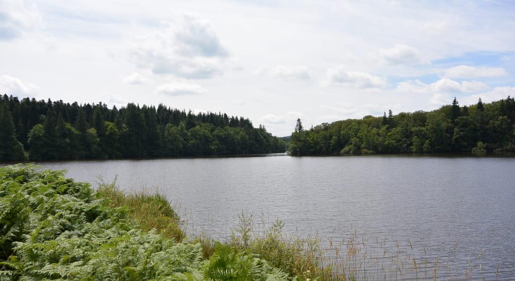 Site de pêche - Étang de Tyx