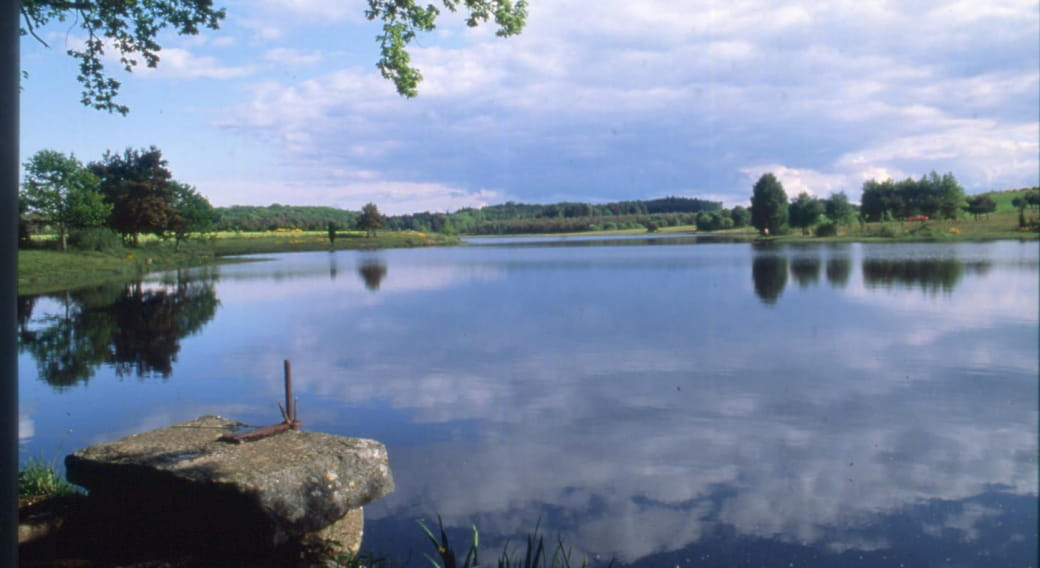 Site de pêche - Étang de Farges