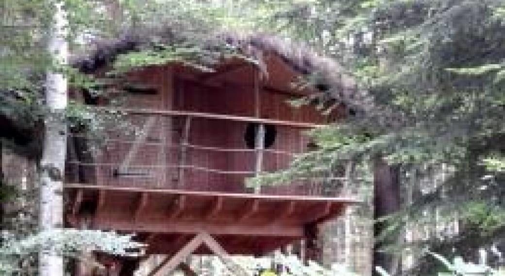 Cabane les Framboises