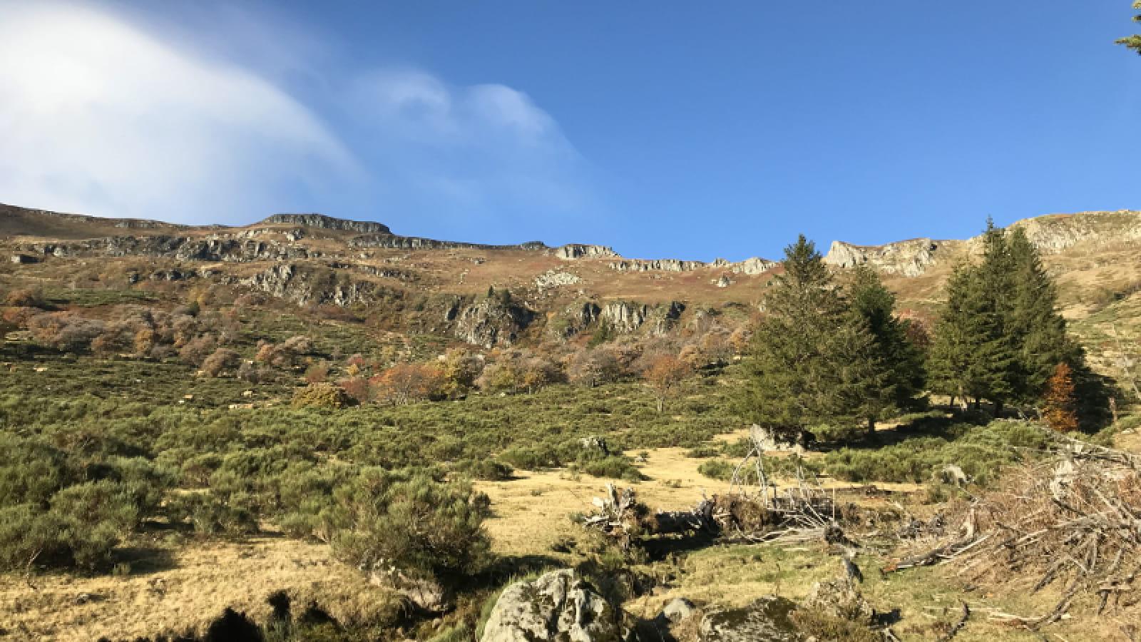 Parcours trail 15 - Plomb du Cantal Prés Marty