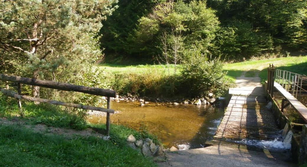 Pisciculture Moulin Piat Ferrières ruisseau