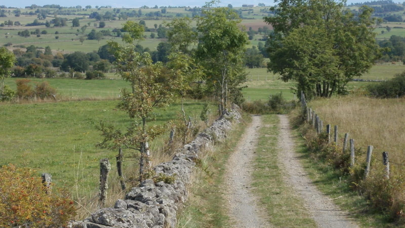 n redescendant du Puy Boussac-Les Terres de Tajenac et la Planèze