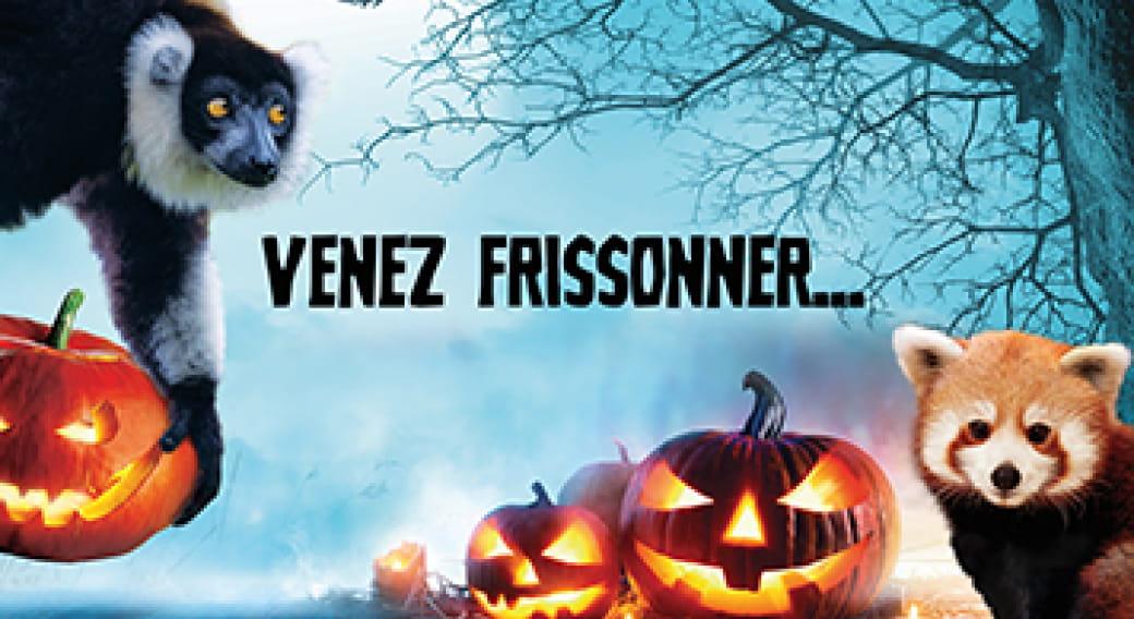 Halloween au Parc Animalier d'Auvergne