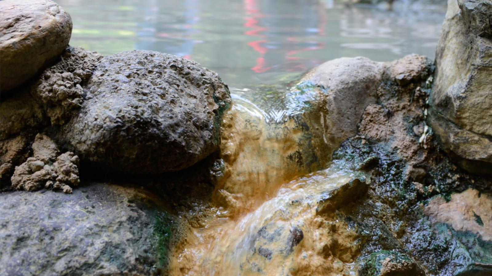 Les sources de la Dordogne -