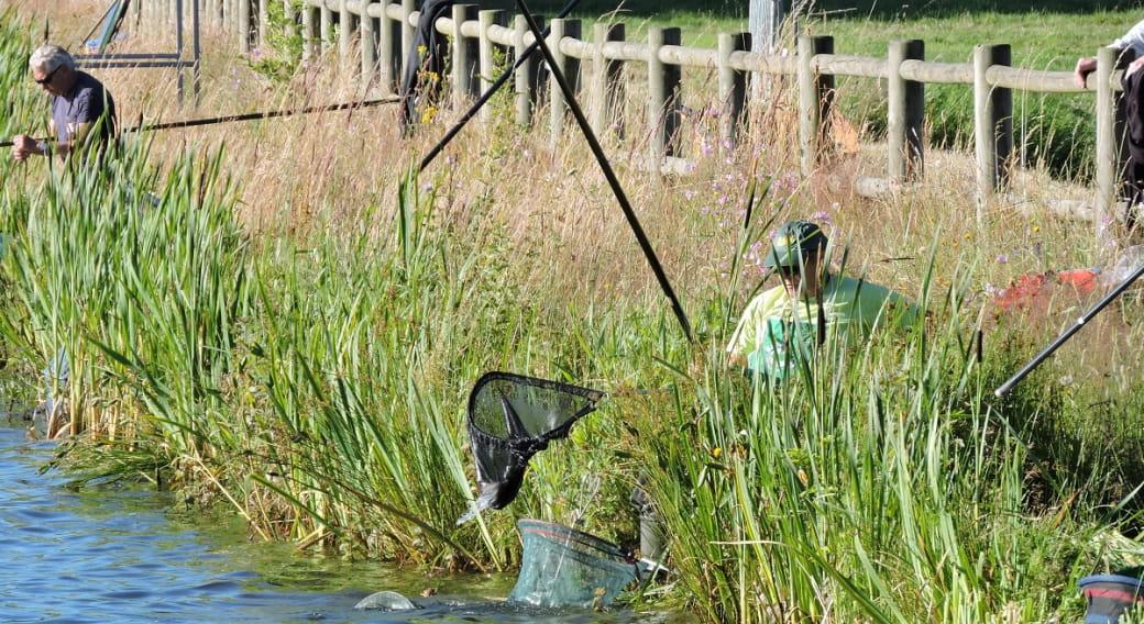 Site de pêche - Étang Philippe