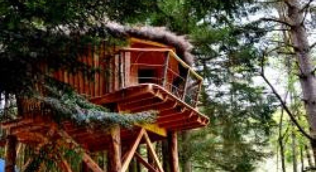 Cabane dans les bois Les Myrtilles