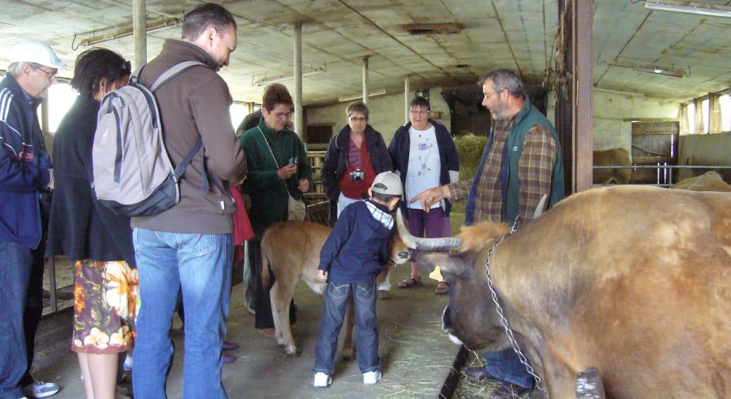 Vivez la ferme en Caldaguès-Aubrac