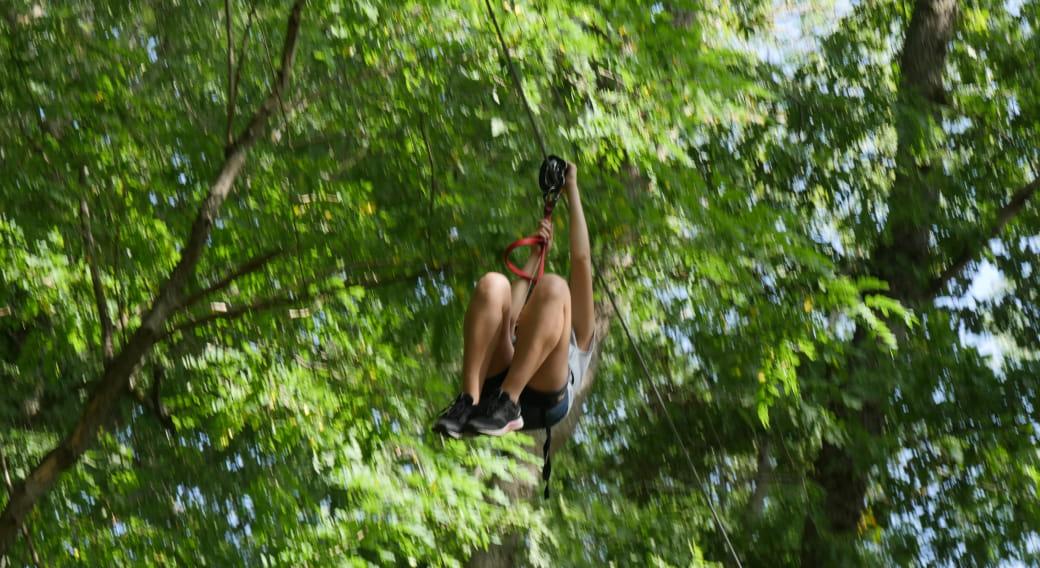 'Canopy en forêt' -  accrobranche