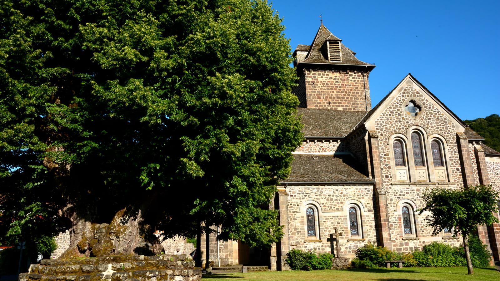 Tilleul Sully et l'église de St Simon