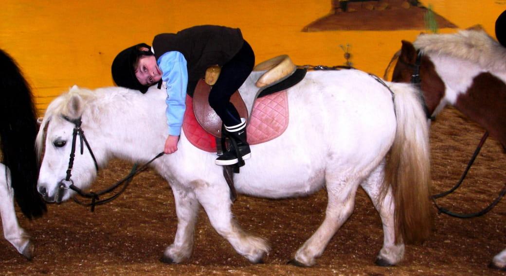 Ecole départementale d'équitation et Poney Club - Equitation