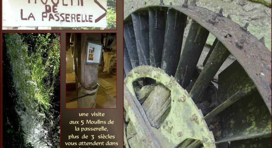 visites aux moulins de la Passerelle à Grandrif et exposition 'arbres papiers'