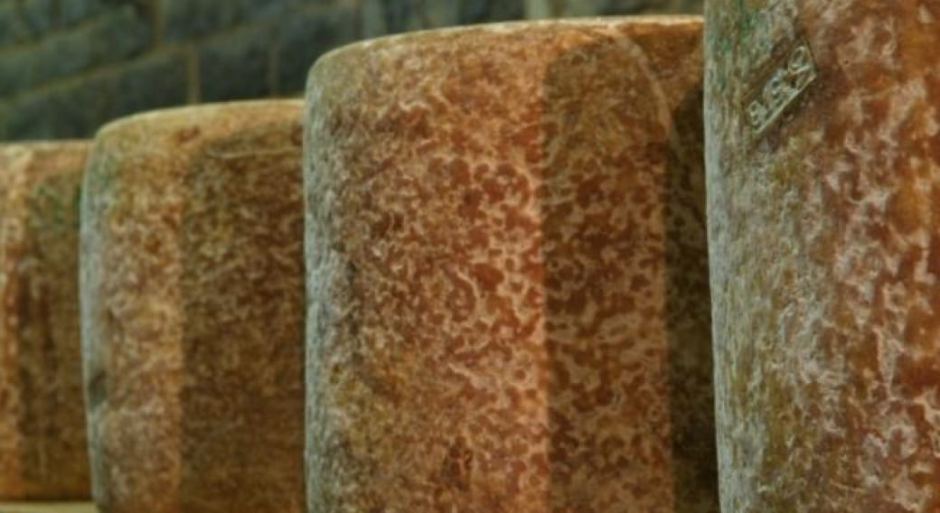 Fromage du Cantal