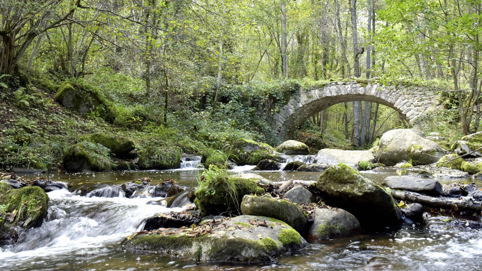 Pont de Riberolles