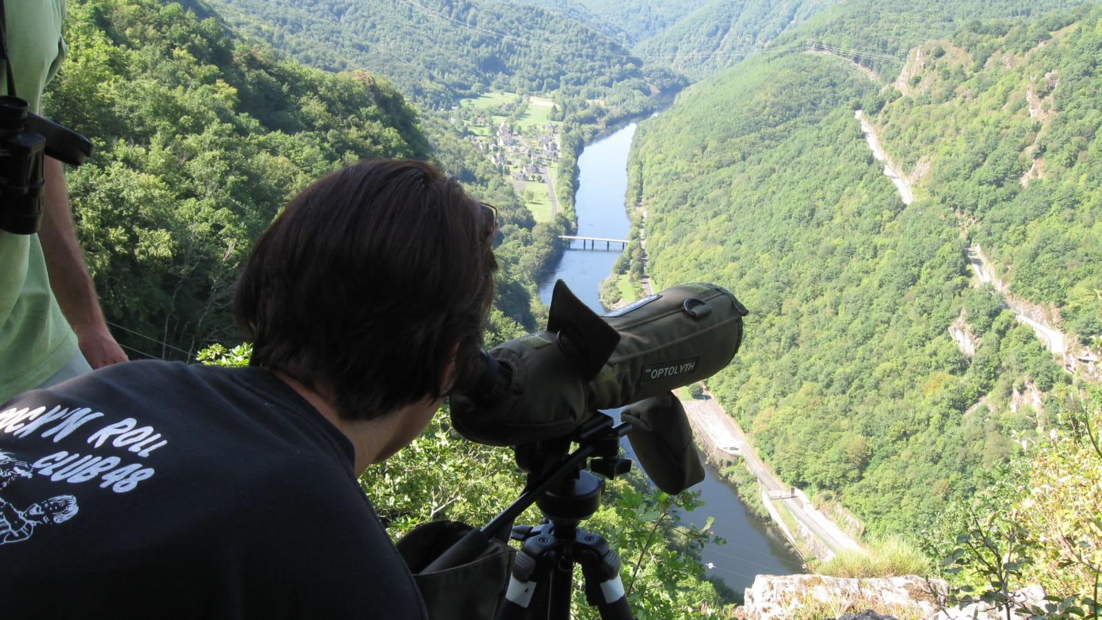 Sentier ornitho de l'Aigle - 6,2 km