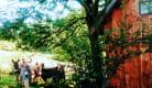 Chambre d'hôtes - La Cabane du Plateau