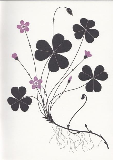 Exposition Herbiers d'Emilie Vast
