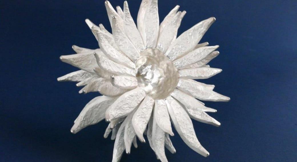 Visite commentée, plein feu sur les collections 'végétal et arts décoratifs'