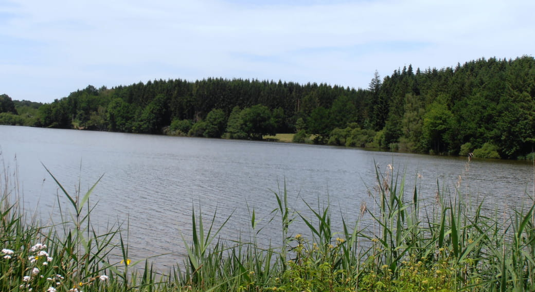 Site de pêche - Étang Neuf