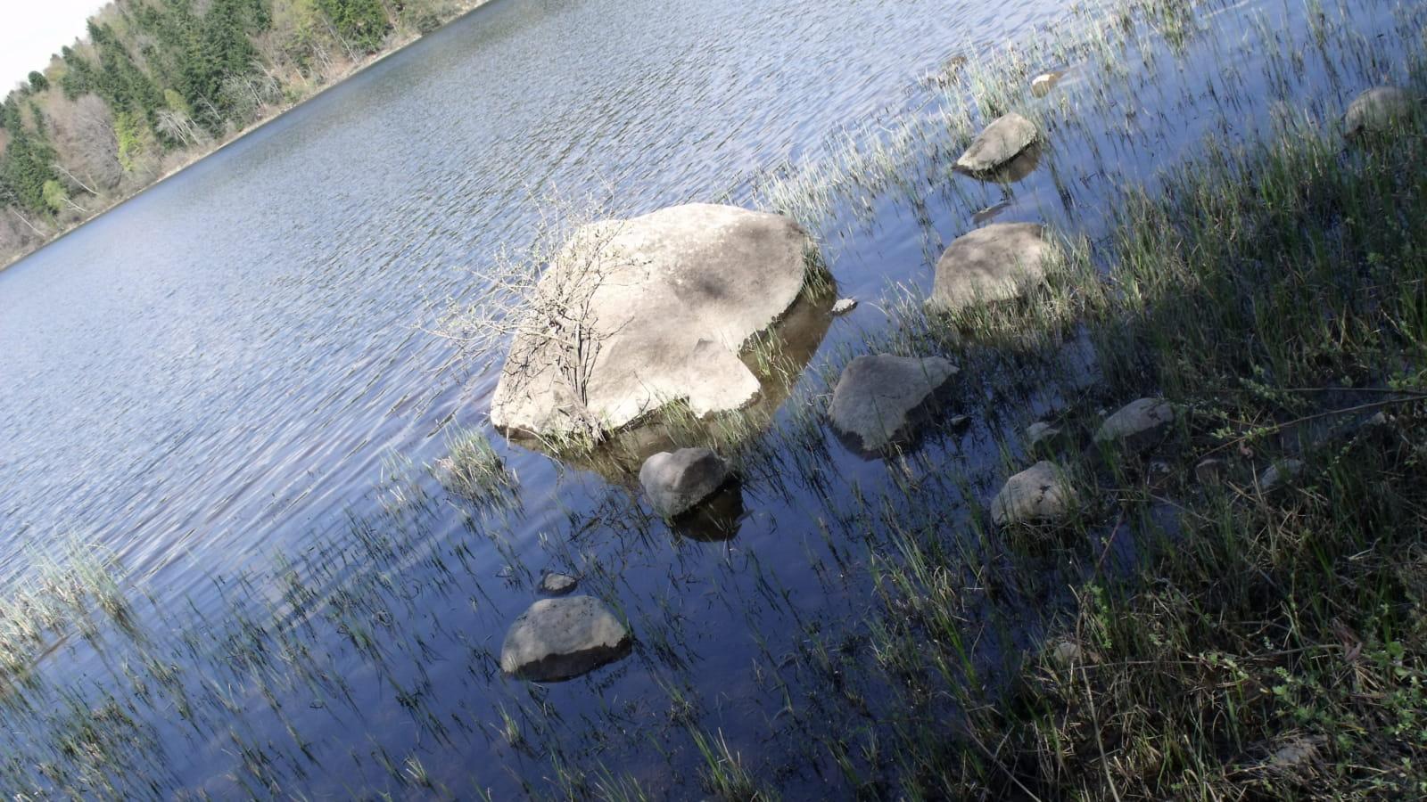 PR 2 - Histoire d'eau