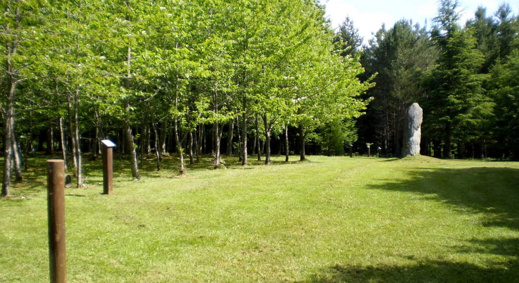 Arboretum du bois des Brosses