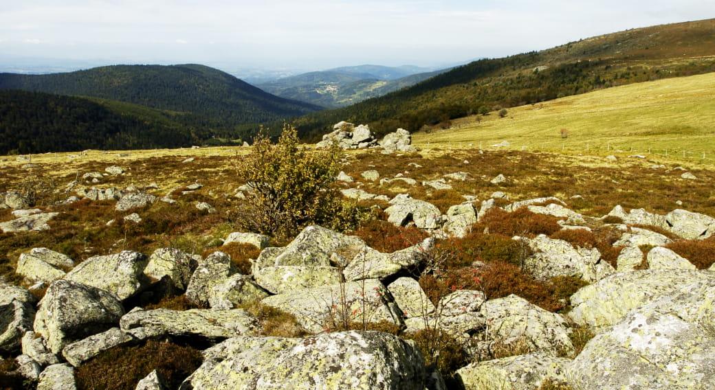La vallée du Fossat
