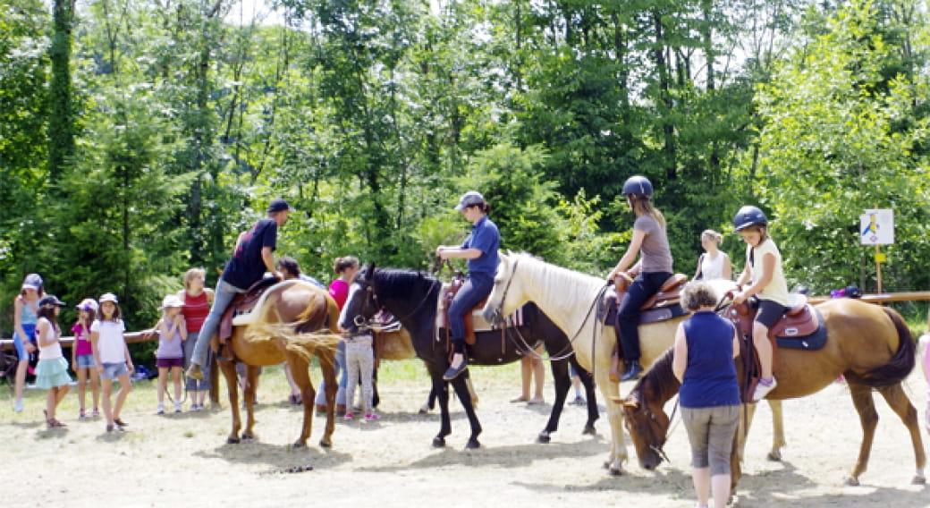 Cours d'équitation Western