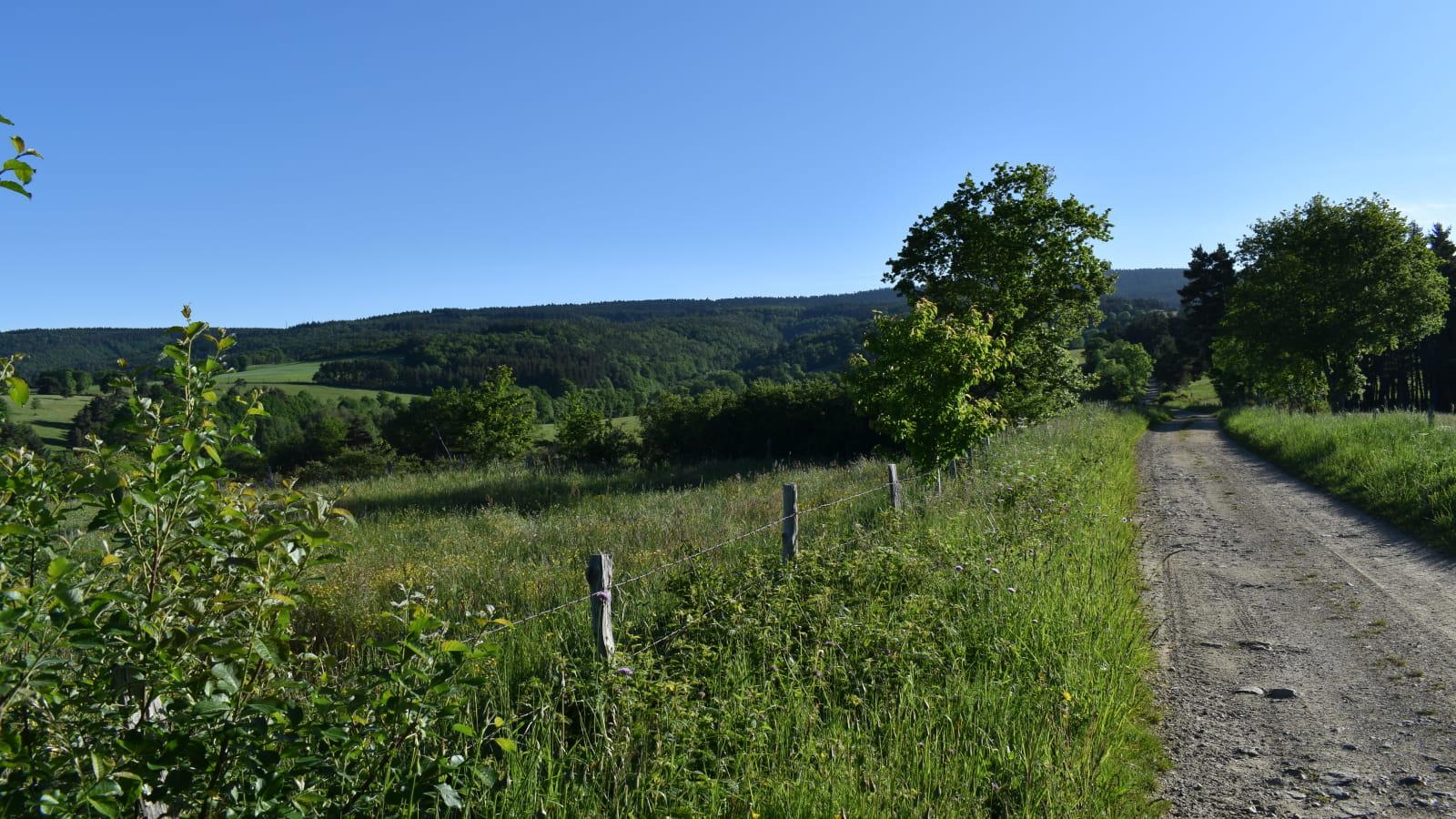 Circuit VTT n°33 : Le Ruisseau de Lafont