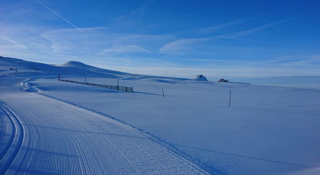 Ski de fond - Secteur de Chastreix-Sancy