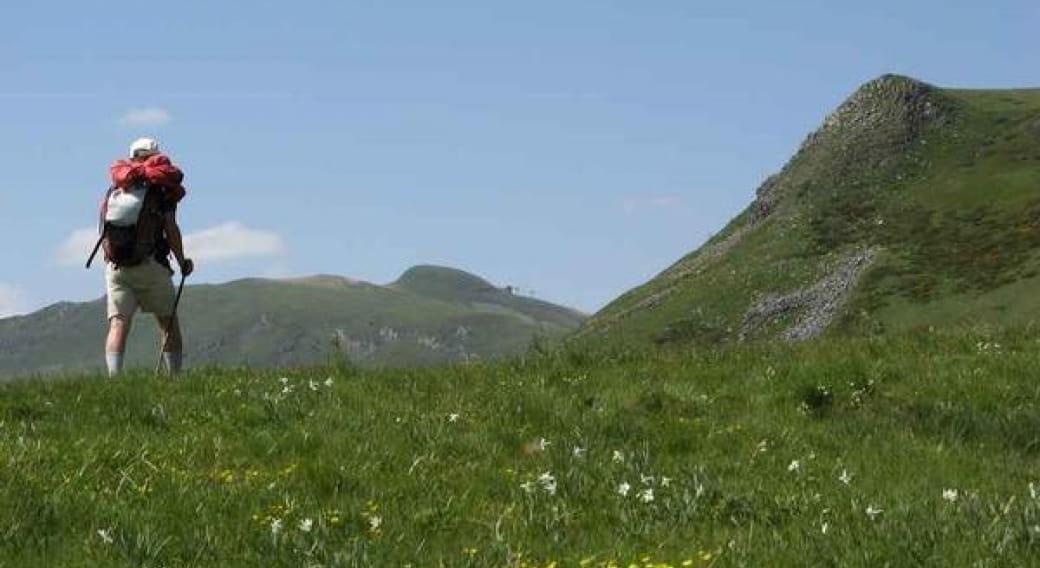 Randonnée accompagnée : le volcan, sa flore et son histoire