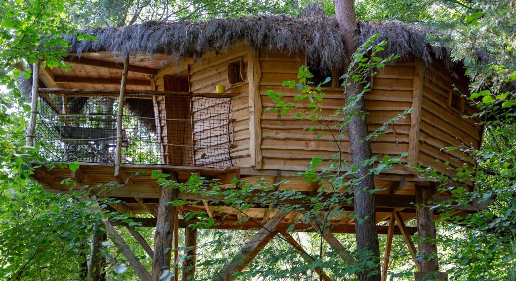 Cabane des Fraises des bois