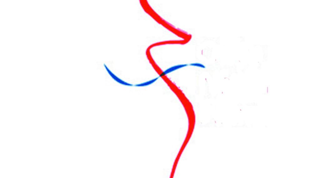 Ordre National des Infirmiers