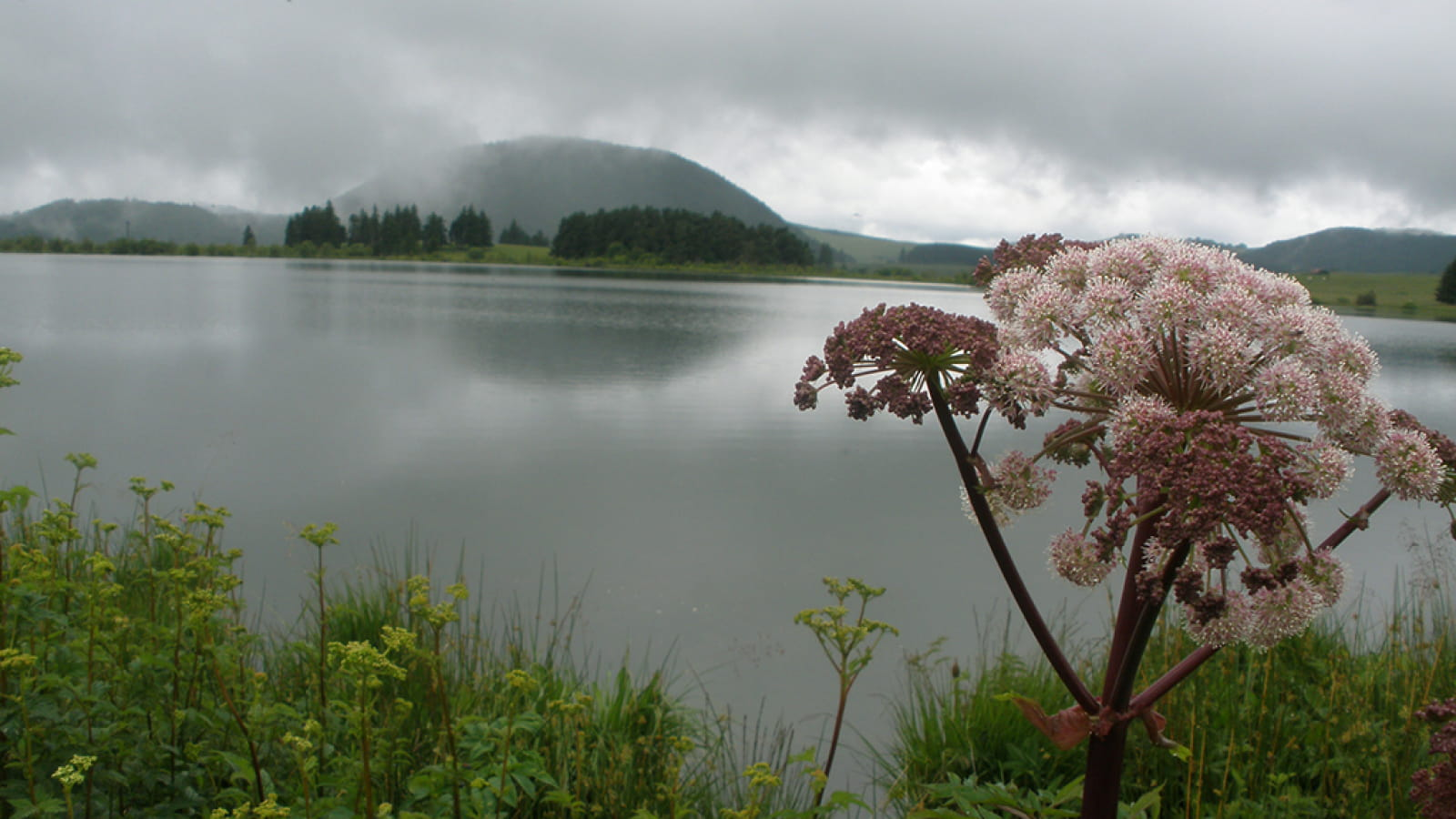 Le lac de Bourdouze