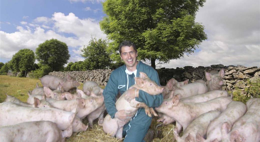 La ferme des cochons gourmands