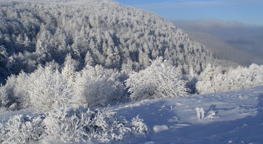 Vallée glaciaire du Fossat