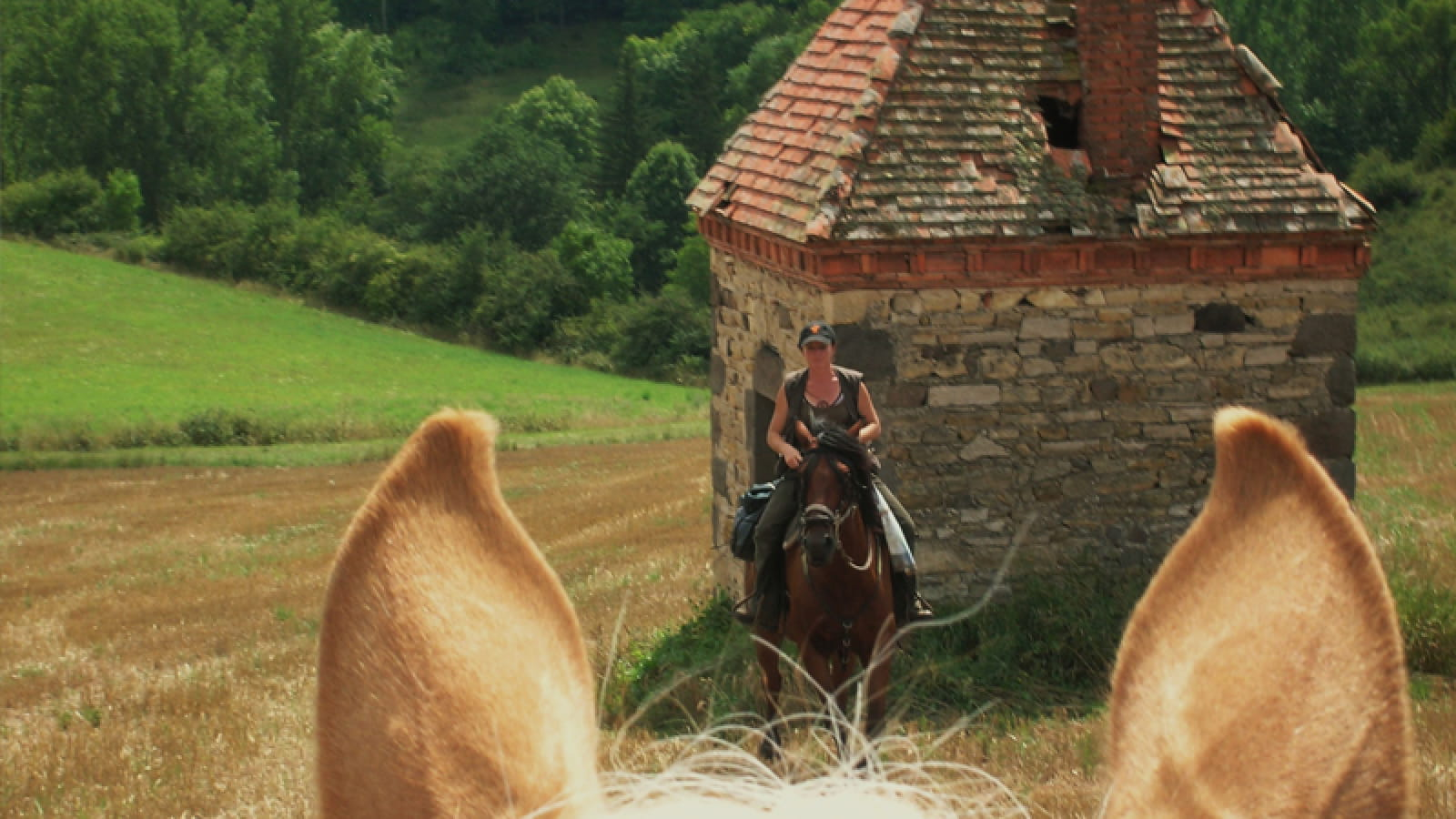 Sur les pas des dauphins d'Auvergne et de la reine Margot
