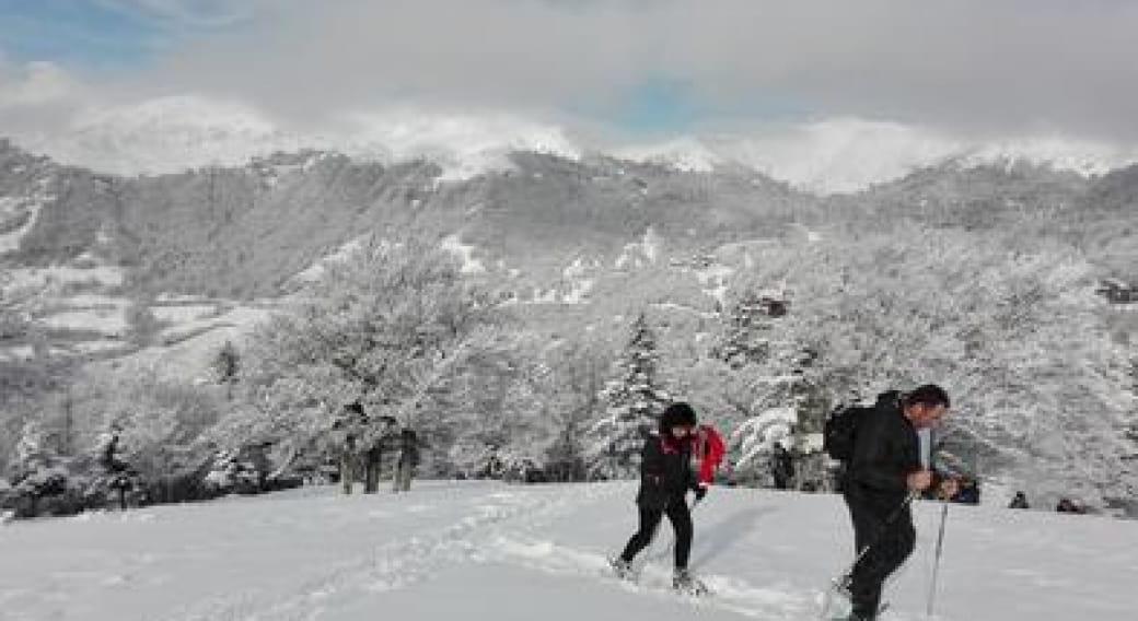 Randonnées raquettes dans le Massif Cantalien