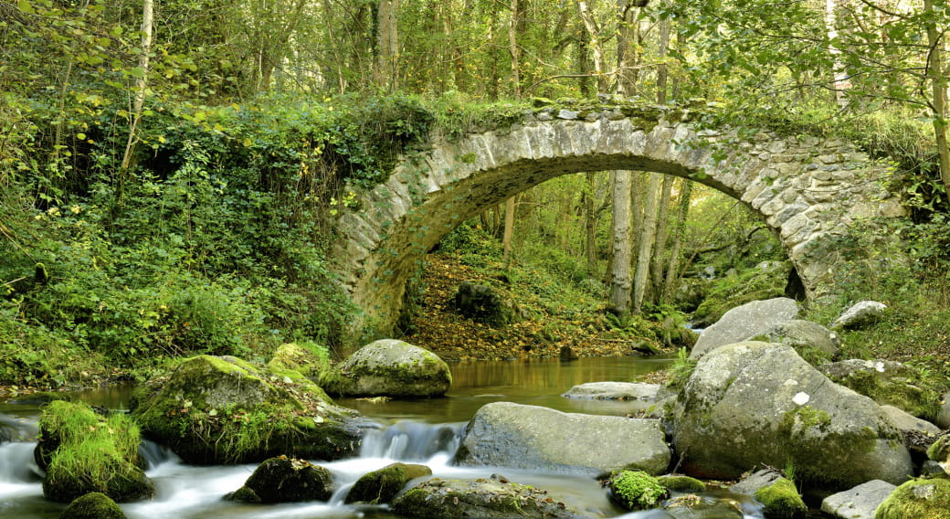 Pont de Ribeyrolles