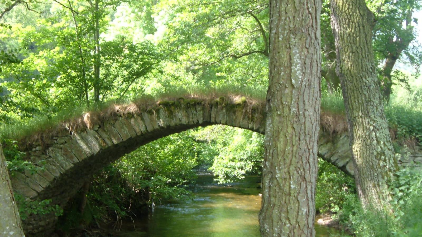Le Bois d'Anliac
