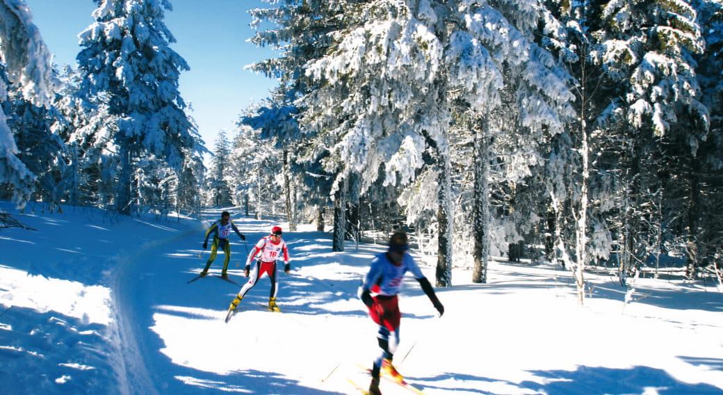 Reveillon Fin d'Annee-Sejour Raquette, Ski de Fond, Biathlon