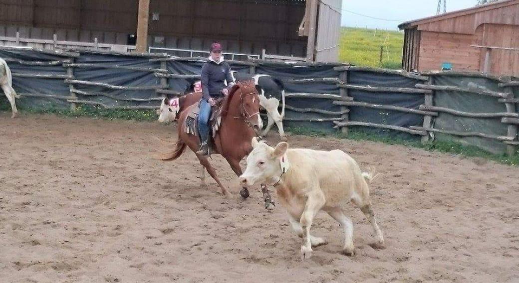Lucky ranch