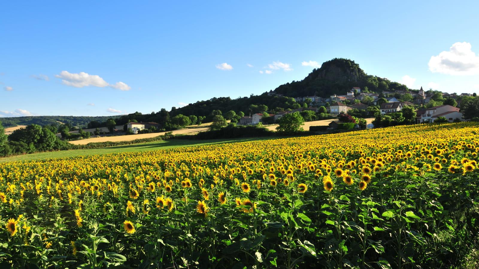 GR® de Pays : Tour en Dauphiné d'Auvergne - Boucle du Val d'Allier n°5