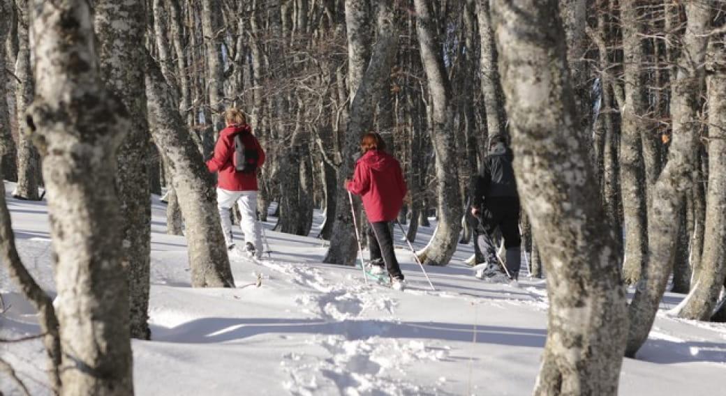 Initiation ski hok