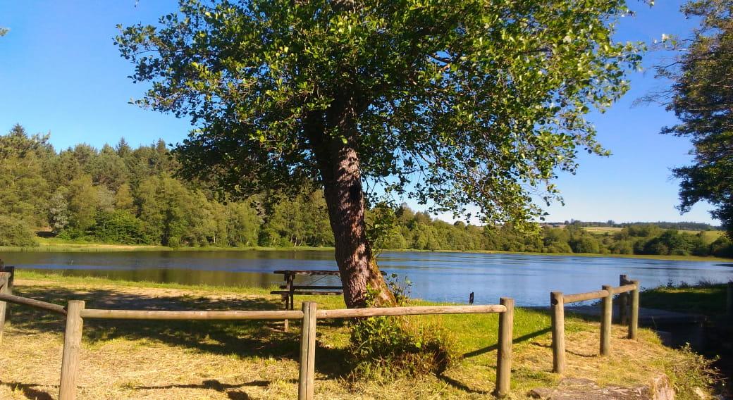 Site de pêche - Étang Willy Mabrut