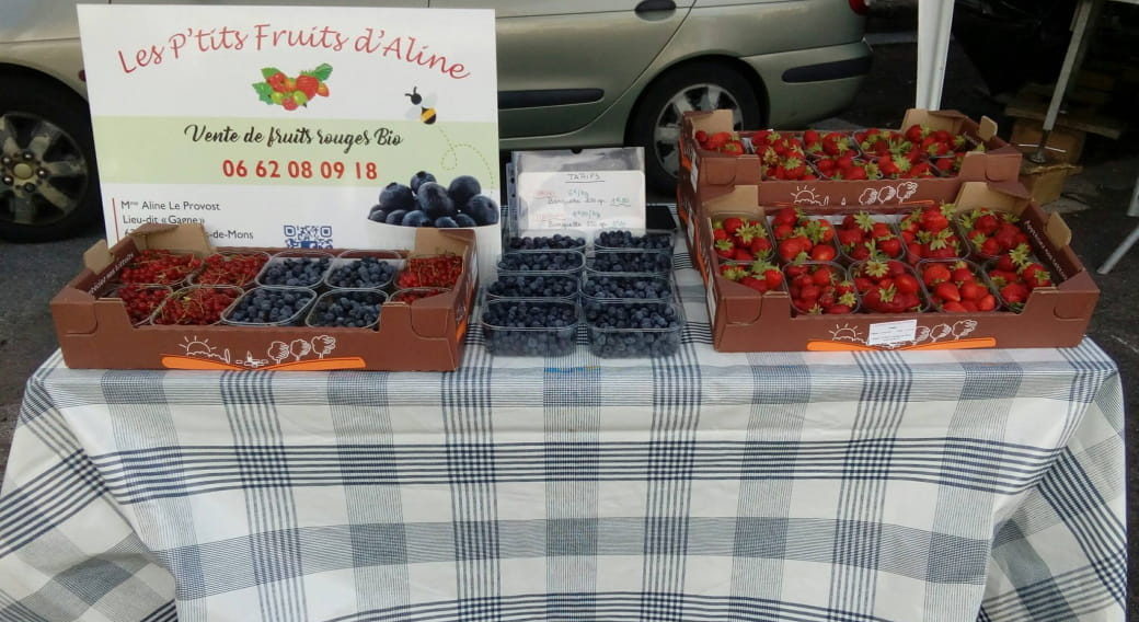 Les P'tits Fruits d'Aline