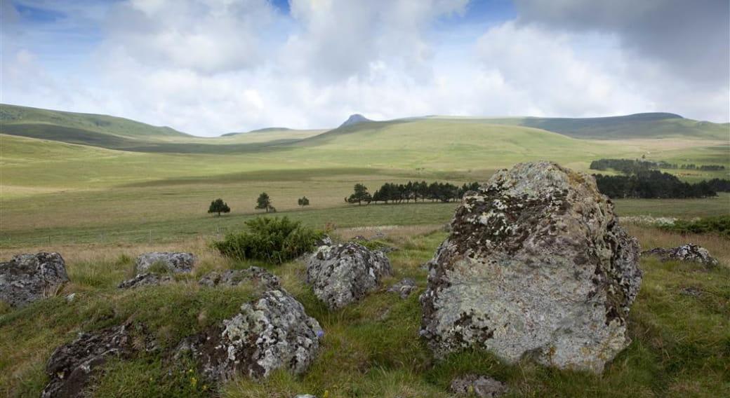 Plateau du Guéry