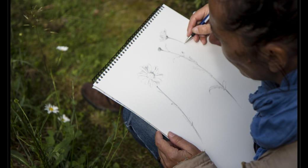 Peintre naturaliste Isabel Naudin